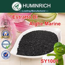 Huminrich SY1001 CATALIZZATORE NUTRIZIONALE A Base Di Alghe Ascophyllum Nodosum