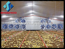 China steel structure building prefab poultry house chicken farm