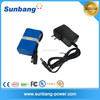 Lithium polymer battery pack 12v 4000mah lipo battery 12v battery with charger