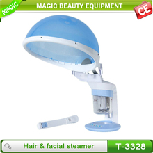 Cheapest 2 in 1 face and hair steamer for home use