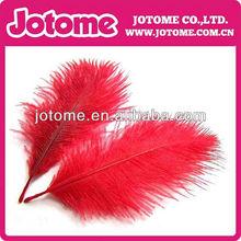 avestruz de plumas tira o corona, productos de plumas