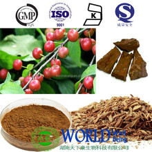 100% nature pygeum Bark Africanum extract pygeum Africanum extract powder 5% phytosterol Pygeum Bark Extract