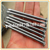 chinese supplies common iron nail /price steel nail