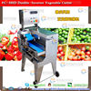 FC-305D fresh lemon grass cutter fresh lemon grass cutting machine