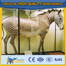 Cetnology Simulation Animal for Museum/theme park/amusement park/mall/activities/events