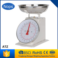 metel body Retro 5kg scales electronic spring scale