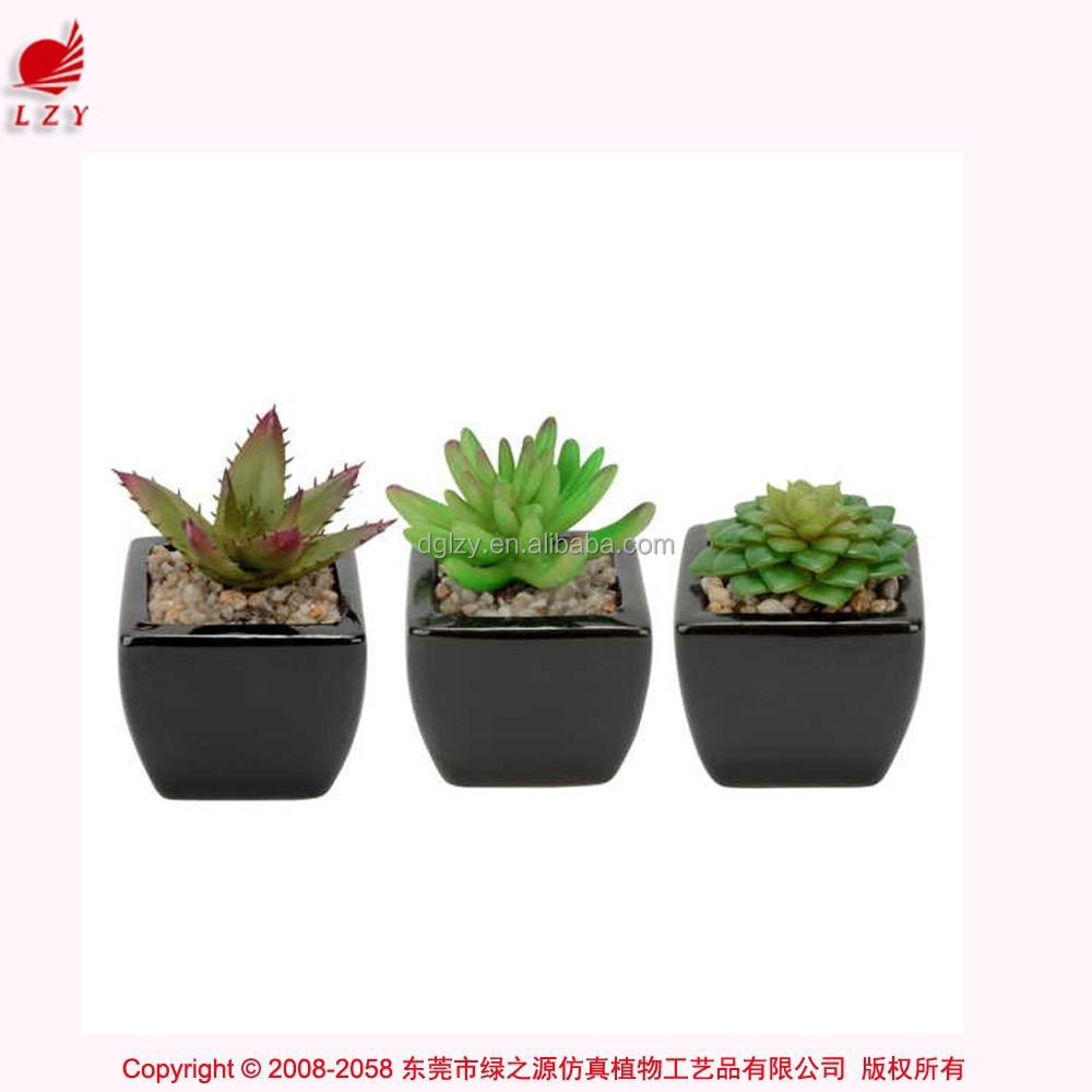 Artificial Mini Succulents Potted Succulent Plant