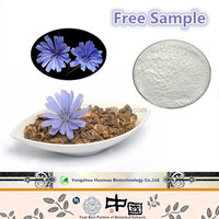best price for the herbal extract chicory powder inulin syrup