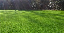 2014 high quality artificial turf,artificial grass,synthetic turf for football field