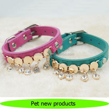 Hot new products for 2015 pet dog