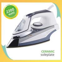 2200W Professional Ceramic Soleplate Electric Vertical Steam Iron