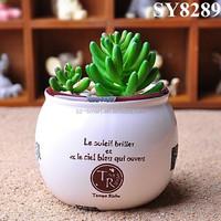 Zakka style desk antique ceramic bonsai