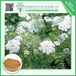 China wholesale high quality common cnidium fruit extract10:1