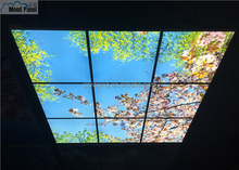2015 led sky ceiling panel blossom image