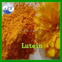 Supply High Quality Marigold Flower Extract for Eye Health Marigold Lutein