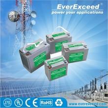 EverExceed Gellyte 24v sealed lead acid battery