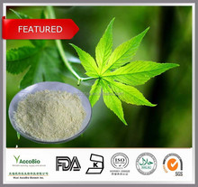 100% Natural sweetener 20%~70% Rubusoside Sweet tea extract, Pure Rubusoside powder in bulk