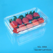 clear disposable plastic fruit packaging strawberry punnet