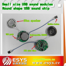 Electronic recordable usb voice chip for toy and gifts