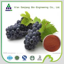 100% natural Proanthocyanidins organic grape seed extract/95% OPC