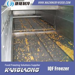 China Factory Peach iqf freezer frozen fruit manufacturers