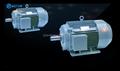 yx3 série totalmente fechado trifásico de indução de gaiola motor