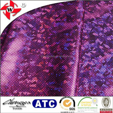 Chuangwei Texile Nylon Spandex Warp Knitting Shattered Glass In Textiles For Dance Costume