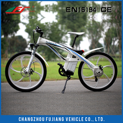 FJ Hot Sale electric bicycle, electric bicycle conversion kit, dynamo electric bicycle