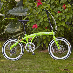 cheap folding bike/mini folding bike/China folding bike