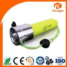 Waterproof Flashlight Led Marine Portable Camping Led Torch Light 10W Diving 3 Feet Aquarium Led Light