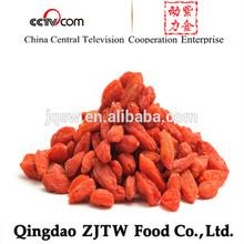 certificación orgánica bayas de goji libre de la muestra de bayas de goji