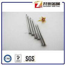 China Common Nail Ion Nail Factory/Wire Nails Price