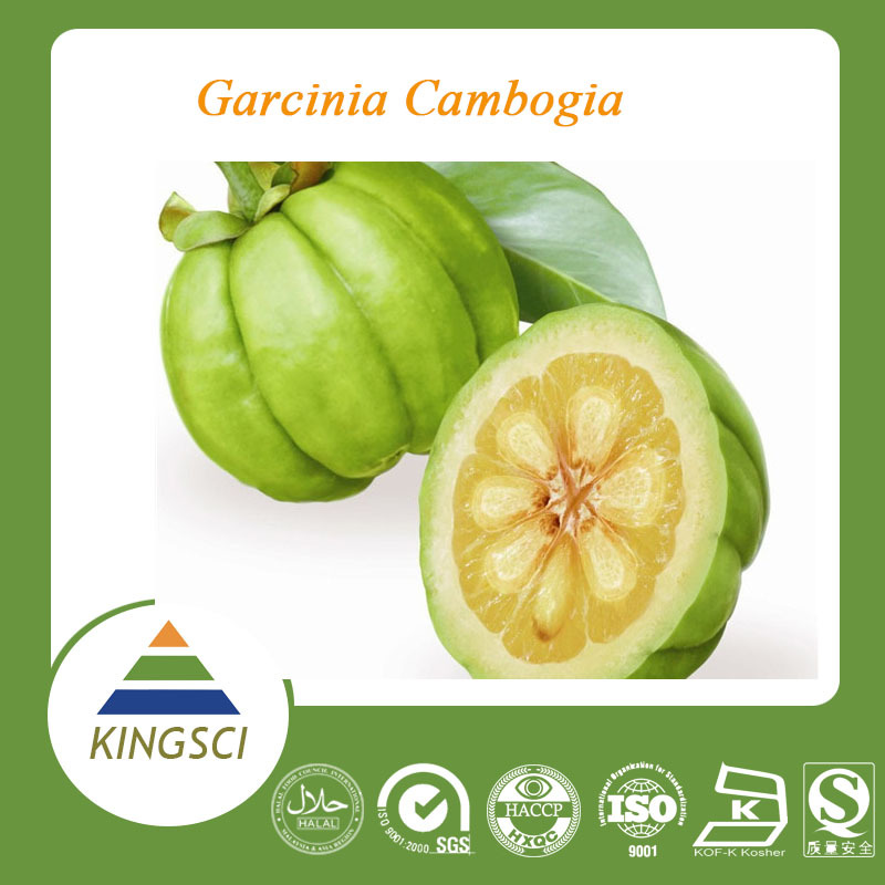 free sample of garcinia cambogia