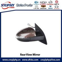 Rearview Mirror brown