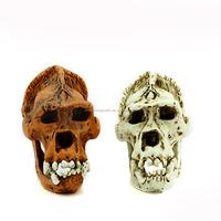 G016 Resin Halloween skull decoration, resin animal skulls !!! Gorilla skulls Top Supplier !!! christmas decoration christmas sk