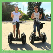 2015 very cool electric water motocycle 36v 1000w