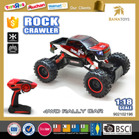 Christmas toy for kids speed king 2.4g rc racing car