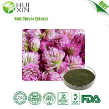 Low Price Isoflavone Red Clover Extract Natural Red Clover Extract Isoflavones20%