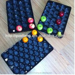 39x59cm Apple/Tomato/Pepper/Pear/Kiwi Use PP Fruit Packing Tray