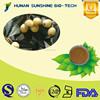 Healthy product Folium eriobotryae extract 10% Corosolic acid