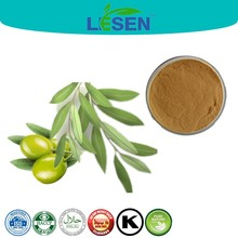 100% Natural Olive Leaf Extract / Oleuropein Powder / CAS 32619-42-4
