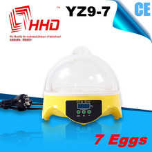 Unique plastic toy for kids of cute little egg incubator
