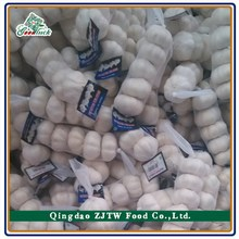 Chinese/China Pure White Garlic - new arrival, hot sales