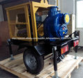diesel de alta presión de la bomba de riego
