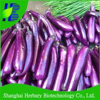 High germination aubergine seeds