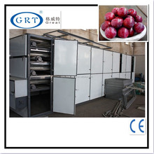 multi-conveyor mesh belt drier for plum/hot air/factory price