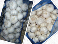2012 natural garlic price