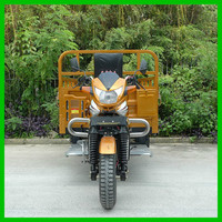 Heavy Load High Speed Three Wheel Tricycle Motor Tricycle