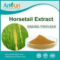 Factory Supply Horsetail Grass Extract Powder 7%/Horsetail Grass Extract 7%