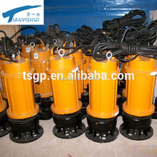Vertical Engineering Cast Iron Submersible Sewage Pump For Mining